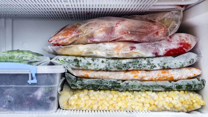 congelar e conservar comida